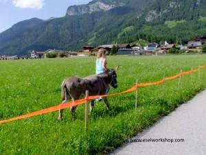 Ferienwohnung Haus Katharina Westendorf Brixental Erholung Schischule Skiwelt Tirol Appartements Ferienwohnungen